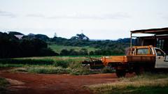 Farm life (welle23) Tags: tweedcoast tweedvalley kingscliff australia farm rural ute