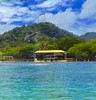Version 3 Dolphin Anthony's Key Resort Roatan Honduras