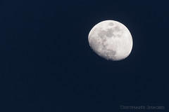 Blue Moon (Scoutchuck) Tags: northcarolina waxinggibbous nd4 knottsisland nationalwildliferefuge canon moon