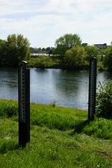 Hoogwatermeters. (limburgs_heksje) Tags: nederland niederlande netherlands limburg borgharen maas grens