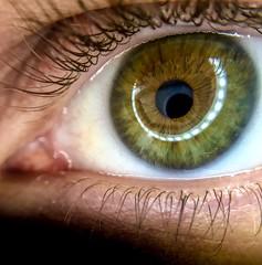 Eye shot with iPhone + Olloclip (richilif11) Tags: green eye olloclip iphone