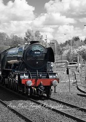 The Flying Scotsman going through Dunfermline. #photography #college #fifecollege #fife #scotland #dunfermline #flyingscotsman #train #trainstation #steam #steamengine #nationalrail #choochoo #colourpop #photoshop #adobe (photoamfp) Tags: the flying scotsman going through dunfermline photography college fifecollege fife scotland flyingscotsman train trainstation steam steamengine nationalrail choochoo colourpop photoshop adobe