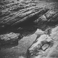 Primordial Soup (pt. i) (Chelsea Branch) Tags: filmisnotdead staybrokeshootfilm 35mm 120mm ilfordpanfplus50 ilford ilfordpanf california lubitel166b lubitell166b landscape seascape grainisgood blackandwhite