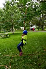 DSC_1264 (Montgomery Parks, MNCPPC) Tags: popupinmontgomeryparks bethesda treeclimbing climbatree tree climbingtrees kids children boys girls arborists elmstreeturbanpark spring may may2017 leaves treetrunks toddler