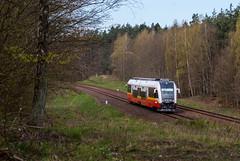 SA133-005 (arkadiusz1984) Tags: szt szynobus przewozyregionalne d29203 ostbahn starogardgdański