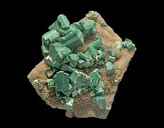 Metatorbernite (Ron Wolf) Tags: earthscience geology metatorbernite mineralogy crystal mineral nature radioactive tetragonal averyon frsnce