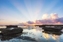 Ray of Light (.njep) Tags: australia canon1635mmf4 canon5dmarkiv longreef nsw northernbeaches sunrise landscape reflection seascape sydney wideangle colour