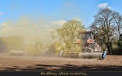 Rolling after sowing. (Tony / Guy@Fawkes) Tags: farm fiedl tractor dust sun spring rolling