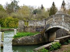 Bridge too Far! (springblossom3) Tags: iffley lock oxford river water students boat race canoes tourism walk bridge architecture