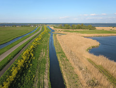 Durgerdam-IJsselmeerdijk (de kist) Tags: kap nederland thenetherlands waterland ijsselmeer ijsselmeerdijk dijk dyke durgerdam flora raapzaad turnip turniprape brassicarapa ijdoorn luchtfotografie aerialphotography