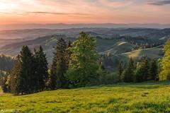 Sunset - Ober Rafrüti (Captures.ch) Tags: alpen alps black blue captures clouds emmental fields flowers gray green hills jura landscape lila lüderenalp napf obererafrüti orange rafrüti red schweiz sun sunset swissalps switzerland trees violet white yellow ngc