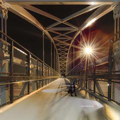 Enzo bridge (lockechrisj) Tags: lockechrisj chris locke chrislocke enzo puppy dog blacklab australianshepperd mutt mansbestfriend colorado