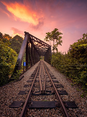 KTM Sunset (Scintt) Tags: singapore railway tracks decommissioned ktm malaysia train rail travel urban exploration sunset orange golden dramatic surreal old relic history trees vegetation forest clouds sky light glow stones foreground wide angle scintillation scintt sony a7r canon 17mm tse tilt shift jonchiangphotography landscape natural