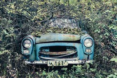 framed (Andy Schwetz - I LOVE DECAY) Tags: urbex car overgrown abandoned decay lostplace verfall andyschwetz fotografiemünchen fotografmünchen canoneos6d canon1635f40 opuszczony oldtimer cargaveyard sweden abbandonata autofriedhof auto
