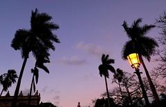 Havana Nights (richard.scott1952) Tags: night nightlife nightphotography nightscene color colorful colour colourful travel tourist trip sky cloud clouds weather warm heat light shadow sun sunshine afternoon sunset twilight summer