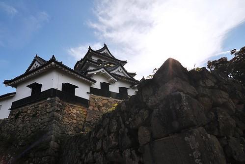 Hikone-jō