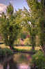reflet (agoste93) Tags: france europe versaillesbuc river natuer paysage