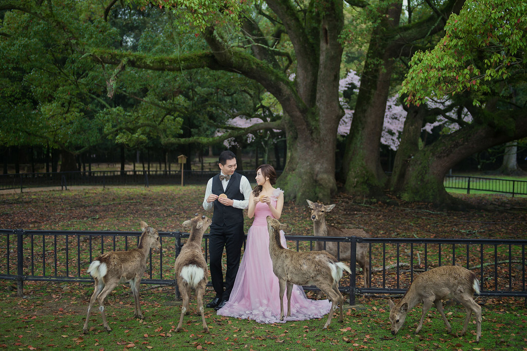 日本婚紗, 京都婚紗, 海外婚紗, 婚紗攝影, 婚攝守恆, 關西婚紗, 櫻花婚紗-6
