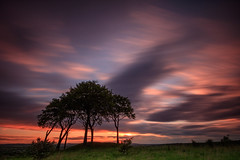 Significance (johnkaysleftleg) Tags: copthill sevensisters sixsisters houghtonlespring tynewear england trees sunset evening canon760d sigma1020mmf456exdchsm 10stopfilter ndhardgrad09 longexposure