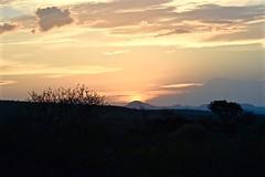 Time to Reflect on Nature (The Spirit of the World) Tags: sunset evening dusk light sun nature amboseli kenya sataoelerai eastafrica africa landscape hills bush brush trees mood atmosphere