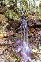 Mother's (Earth) Day (zxorg) Tags: creek flowingwater longexposure nature forest