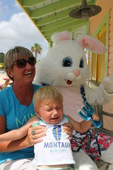 Easter Bunny 148