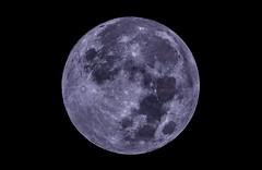 Luna 12/03/2017 (Fox J.) Tags: astrophotography space deepspace espacio stars star universo universe astronomy astronomia astrofotografia astrometry