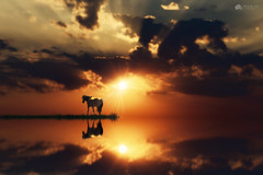 The most beautiful place in the world is in your heart... (Kerriemeister) Tags: horse sunset reflection sky clouds imagination photomanipulation photoshop composite composition digital art magical cloudscape water
