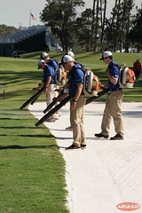 IMG_6583.jpg (AQUAAID) Tags: theplayers tpcsawgrass aquaaid