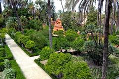 Alcazar (Biolchini) Tags: spain sevilla seville sevilha alcazar garden jardim