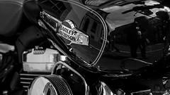 Black (frankdorgathen) Tags: italien italy toskana tuscany lucca urban town city shiny black transportation vehicle harleydavidson tank motorcycle