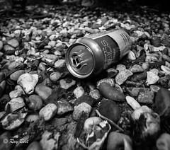 Beach trash (Raginmund) Tags: blackwhite trash rubish wast tin can beer beach