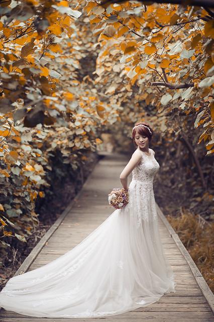 33844322664 e27dfbf8cb z 台南婚紗景點推薦 森林系仙女的外拍景點