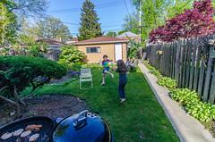 Week 19: Story - Back Yard (spablab) Tags: dogwood2017 dogwood52 dogwoodweek19 chicago backyard grilling playing julian stella patty ruth kids mothersday