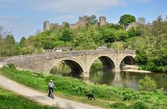 Ludlow Castle, Shropshire (Explored) (Baz Richardson (now away until 27 May)) Tags: shropshire ludlow ludlowcastle normancastles medievalbuildings bridges explored