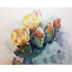 🌵 (丸子·汤) Tags: illustrator drawing art flower green color watercolour flowers summer painting sketch draw watercolor interesting