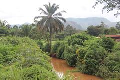 IMG_3966 (worldbank_cameroon) Tags: transport road bamenda northwestregion babadjou