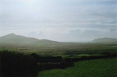 (mari-ann curtis) Tags: film 35mm nostalgia green ireland peninsula tour countryside rural landscape sea clouds grass fields farm hills mountain coastline mist light sunshine summer travel memories sheep dingle cokerry atlantic coast nature colour
