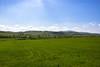 Toscana 2017 (Eleonora Cacciari) Tags: tuscany toscana paesaggiotoscano eos1200d eleonoracacciari ecacciari italia green ilovegreen sky cielo cieloazzurro paesaggioitaliano landscape ©eleonoracacciari