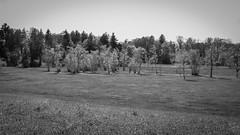 Landscape in the sun (titan3025) Tags: fuji fujifilm x100s camera bnw blackandwhite bw monochrome