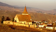 Hunawihr (Philippe Haumesser Photographies (+ 4000 000 views) Tags: village église church vigne vignes vine vines vignoble vineyard vineyards hunawihr alsace elsass france hautrhin 68 coucherdesoleil sunset 169 sonyilce6000 sonyalpha6000 sony 2017 nature landscape landscapes paysage paysages hiver winter colline collines hill hills