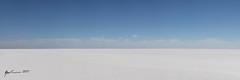 Lake Eyre Panorama (R. Francis) Tags: panorama lakeeyrebasin lakeeyre vast salt saltlake bluesky white landscape