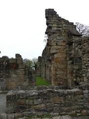 P1110859 Basingwerk Abbey, Holywell, Wales (27) (archaeologist_d) Tags: wales cistercians 12thcentury basingwerkabbey holywell abatydinasbasing