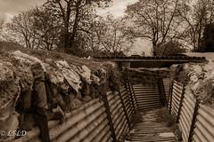 Auchonvilliers7 (@LFLD) Tags: ww1 auchonvillers hautsdefrance france hawthorn ridge