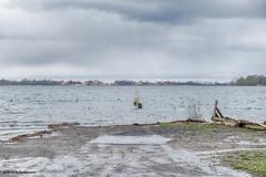 The Lost Dock (gabi-h) Tags: dock pier water lakeontario highwater gabih princeedwardcounty flooding highwaterlevel puddles ontario lake sanddunes sandbanks greysky rain stormdamage overturnedsign