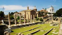 2017 005 Italy 01 (ngari.norway) Tags: italy ngariphotos travel europe ngari photos rome forum romanum ruins ancient