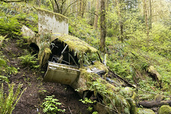 Lincoln Continental (Curtis Gregory Perry) Tags: portland oregon lincoln continental 1966 1967 abandoned sedan auto automobile car forest park trees pdx 66 67 green woods decay rusted broken junk crash vehicle nikon d810 24mm