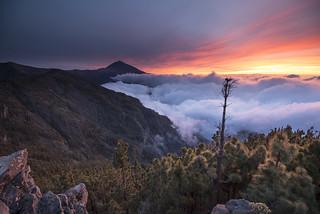Vista cara este del Teide (Ayosa)