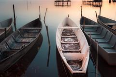 Barche al molo (SDB79) Tags: barche pesca lago lesina alba puglia pace colori rosso natura paesaggio