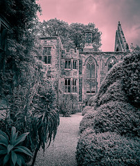 Nymans 118/365 (andrew.varney) Tags: westsussex monochrome ruins history nikon d5100 outdoors outside 365 gothic nationaltrust